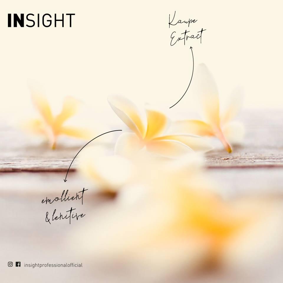 insight, fot.materiały prasowe