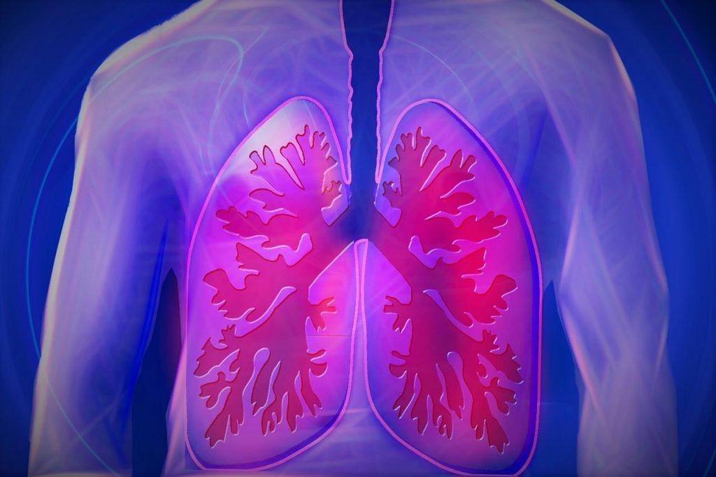 grafika płuc